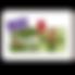 9084_logo-Qualibois-2019-RGE-png.png