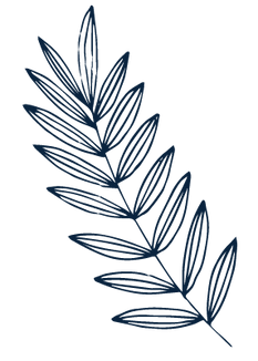Herbs - Large-01.png