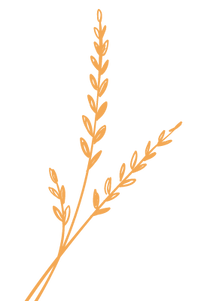 Herbs - Large-04.png