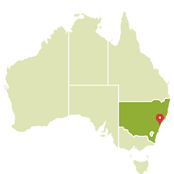 Sidney no mapa