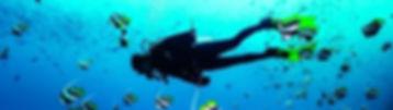 Baptème de plongée sous-marine à Bruxelles
