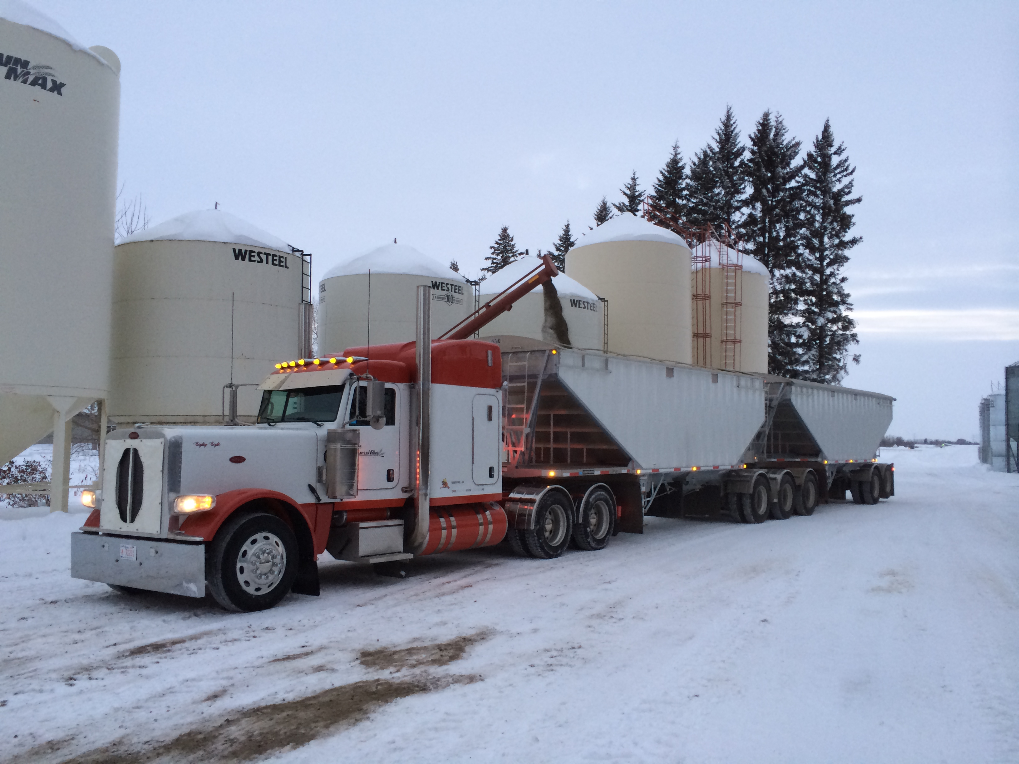 Antler Valley Farm - Hauling Grain