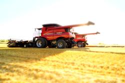 Antler Valley Farm - Harvest 2014