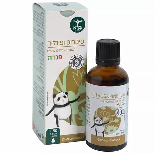 סיטרוס ופינליה פנדה - Citrus & Pinellia Panda