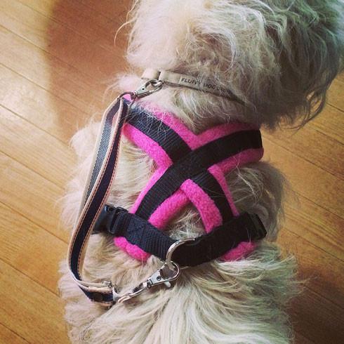 Dog Homestay FLUFFY DOG フリースラインドハーネス