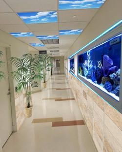 Hallway Node