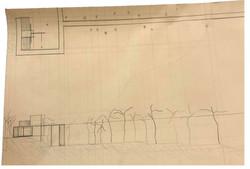 Pavilion Plan & Section