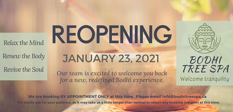 WEBSITE 2021 Reopening.png