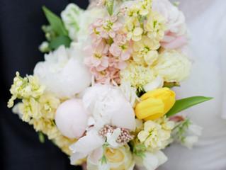 Pastel Spring Blooms