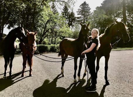 Robyn Smith September Blog ⭐️
