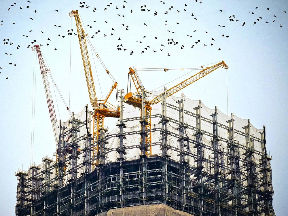 Flock of birds flying over a paused building site