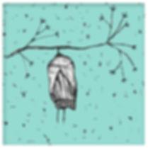 04-mariposa.jpg