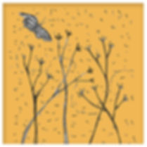 06-mariposa.jpg