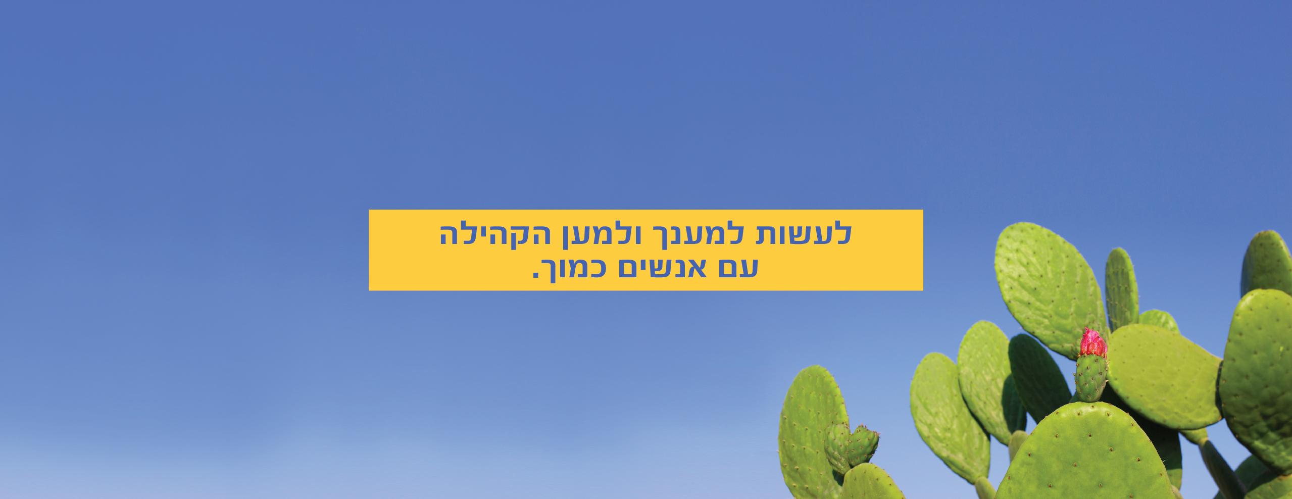 סטריפ אתר2-06