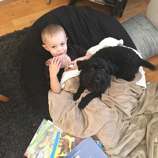 Some times a guys just needs a morning cuddle with the puppy and some books