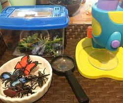 Bug Exploration Station 🐛🦋🐞🐝🐜 #bugs #Invitationtoplay #preschool #yycpreschool #doodlebug #scie