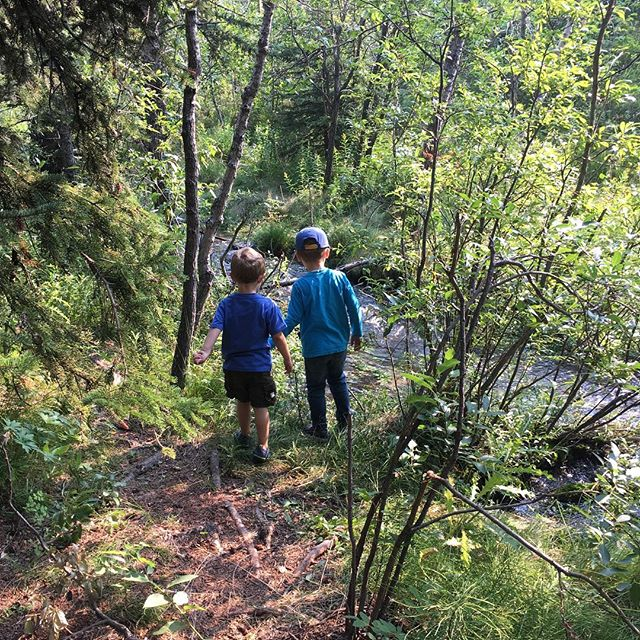 Wilderness explorers #preschoollife #doodlebug #wildernessexplorer #happyboys #bighillsprings #natur