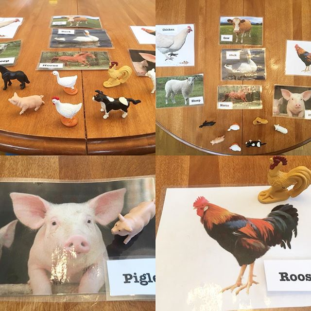 Farm animal matching game 🐄🐑🐓🐐🐖🐎 #matching #farm #preschool #farmfriends #yycpreschool #yycmom
