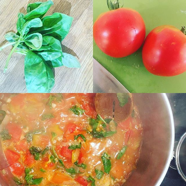 Garden to table🌱 Fresh homemade tomato basil sauce for lunch today 🍅 #healthyfood #happyboys #yycp