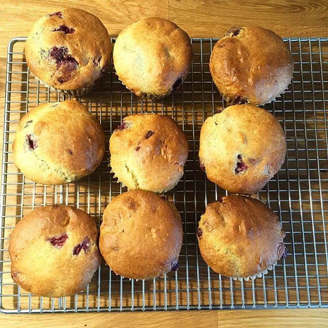 Raspberry lemon muffins 🍋made with 💕by all my little Doodle Bugs ready to go for afternoon snack #