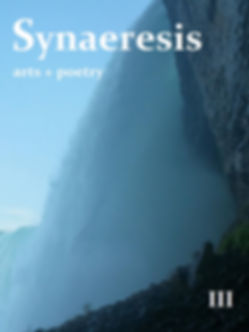 synaeresis issue three front cover.jpg