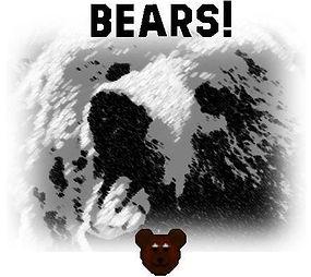Bears!.JPG