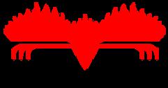 Firebird-software.png