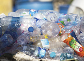 Are you recycling your plastic containers?