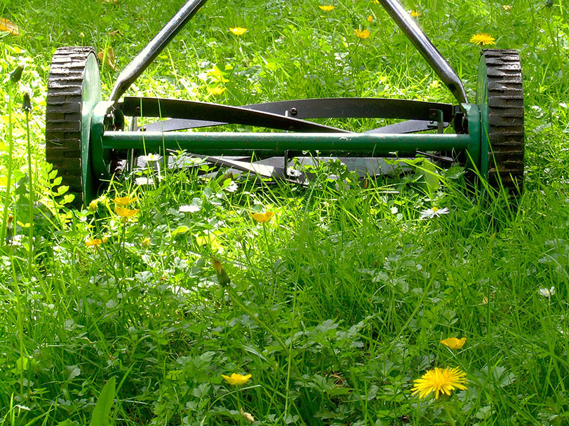 old lawnmower rolling through the grass