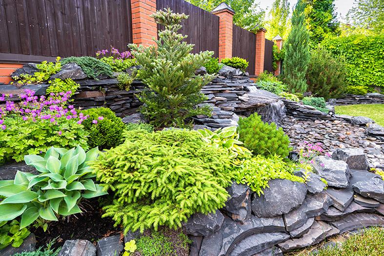 landscape yards stones plants rock