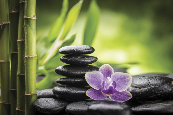 Concept image stacked stones and flower