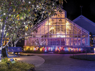 NC Arboretum hosts its fifth annual Winter Lights Holiday Light Show