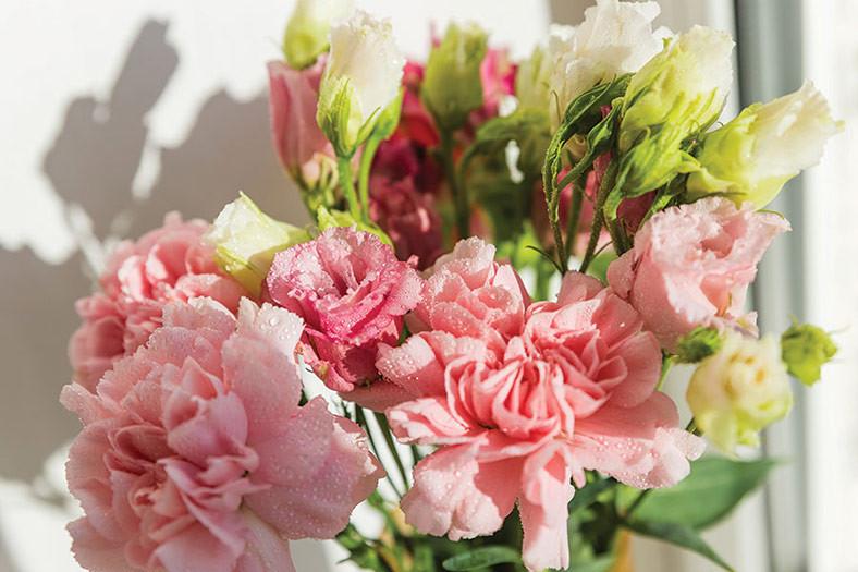 rose display