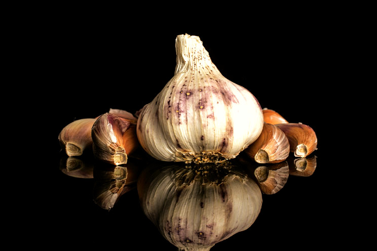 Clove of garlic making your healthy in your diet