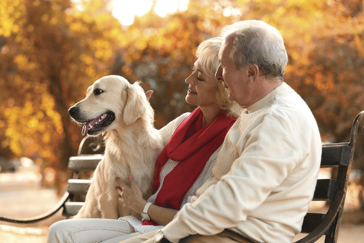 couple with older dog