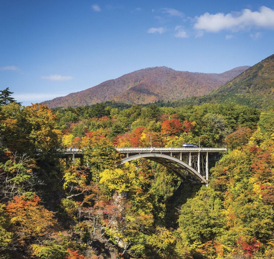 Bridge on the Parkway