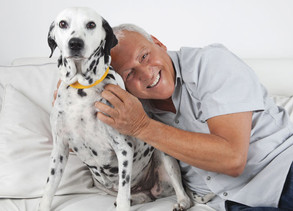 Owning a Pet Can Help Ease Depression