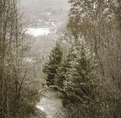 Experience the best of winter in WNC