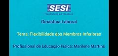 Marilene flexibilidade membros inferiore