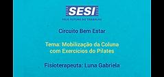 Luna_Mobilização_coluna.png