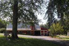 Little Springs Farm