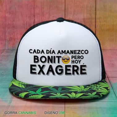 gorra-cannabis037_orig.jpg