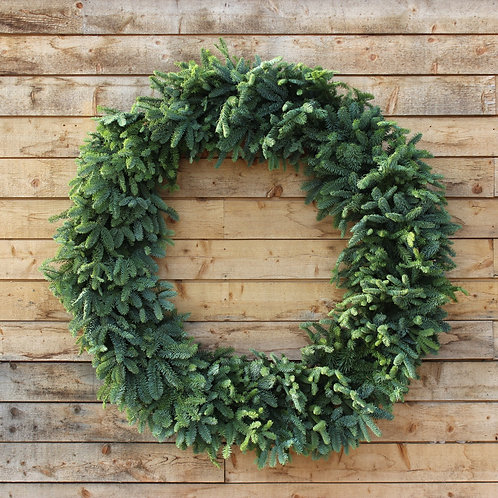 Noble Fir Wreath 48""
