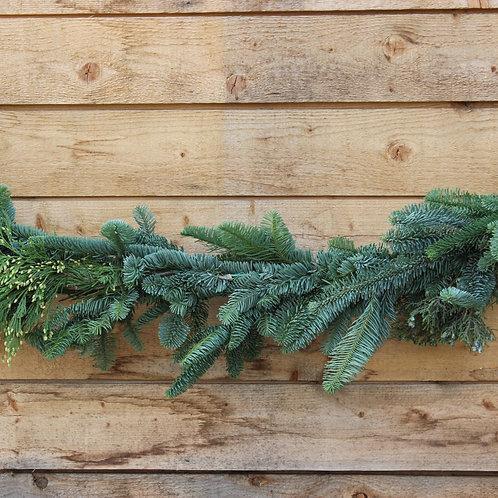 Mixed Evergreen Garland 25 Feet
