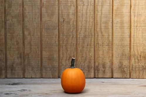 Cannonball Pumpkin