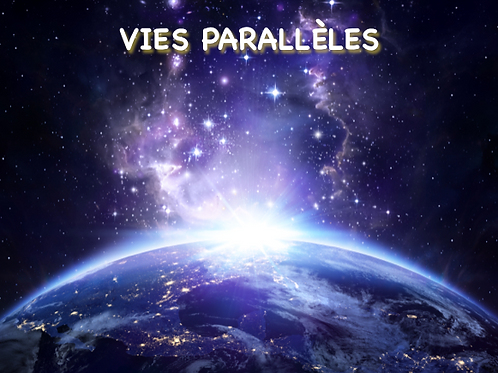 Atelier-Portail Vies Parallèles 11-11-2020