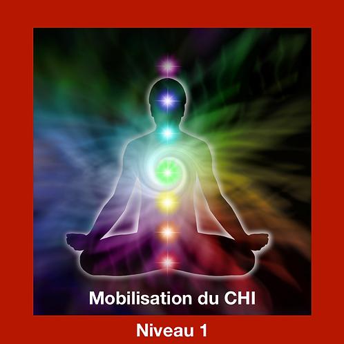 Mobilisation de Chi à distance- Niveau 1