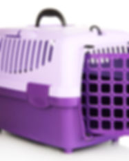 Pet travel plastic cage isolated on whit