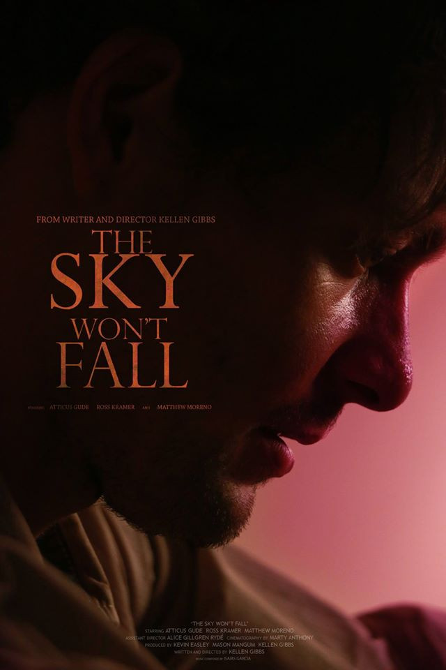 THE SKY WON'T FALL (2014)