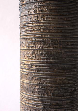 Acer pseduplatanus - Juglans regia